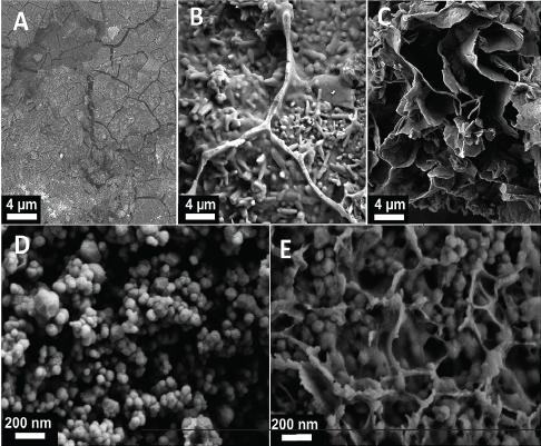 cement-molecular-07